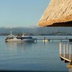 The Resort's Pier & Launch