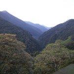 View from my room at Tandayapa lodge