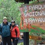 Parque Nacional, entrada