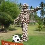 Coconaldo!