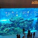 Indoor Aquarium, Dubai Mall.