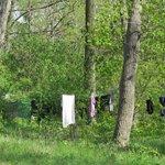 Washing at Wards Island