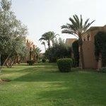 Riad et jardin