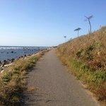 羽咋健民自転車道 6