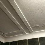 Ceiling in bathroom in Spa - 2