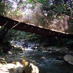 petit pont suspendu a l entrée du parc