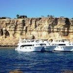 Tiran Island snorkelling site - VIP Red Sea day trip