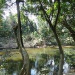 Rivière longeant le resort du parc