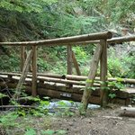 One of many wooden bridges in the national forest
