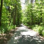 Walking the beautiful trails