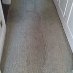 Giant stain in the carpet. Adds some class to an already smelly room.