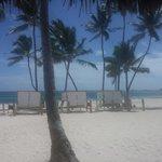 Vista da praia com espriguiçadeiras