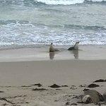 due mamme tornate dalla pesca