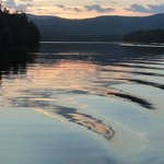 Loon and ripples on beloved Squam Lake.