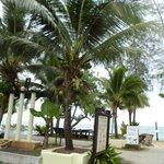 Sicht zum Strand mit Palmen
