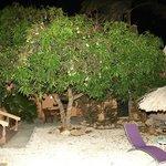 Punta Salina