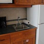 sink and fridge