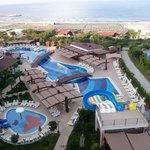 Pool + Pool Bar