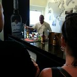 The Can't miss Bacardi tour, minutes from the Hotel