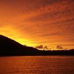 totoya sunrise