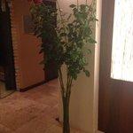 Incrivel decoração com rosas equatorianas.