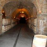 Interior wine barrels
