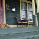 Maggie on the front veranda