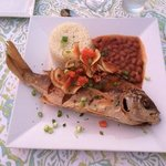 grilled snapper with beans and rice