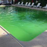 Green Pool!  Unedited Pic