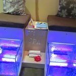 Grand Velas spa--fish treatment for feet