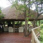 Sabi Sabi - África do Sul