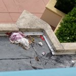 View of trash from our 5th floor room...old towel and hundreds of cigarettes along with other tr