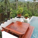 Amazing view from your plunge pool