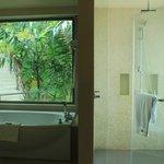 See through bath room