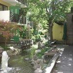 Jardin interno donde dan los cuartos con terraza individual