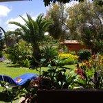 Blick aus unserem Zimmer auf unseren privaten Garten