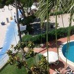 utsikt fra rommet mot hagen og stranden.