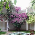 jardins interieur