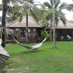 Garden view with hammock