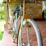 Old Bike in Viet Artisan Centre
