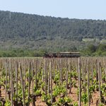 See the hidden part of Mallorca