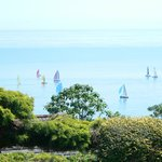 Views From The Gardens - Round The Island Race