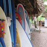 Rack of surfboards