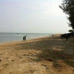 Batu Ferringhi beach next to the Bayview
