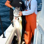 Fish for bluefin tuna with Captain Bobby Rice