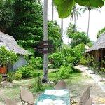 Garden, bar, dinning area