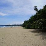 der Strand - Natur - ohne Bar - keine Liegestühle -