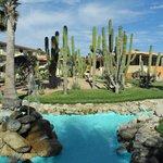 Garten mit Kakteen und künstlichem Wasserlauf