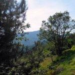 panorama dalla camera monte Alpe