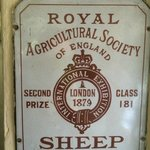 Sheep award - from London